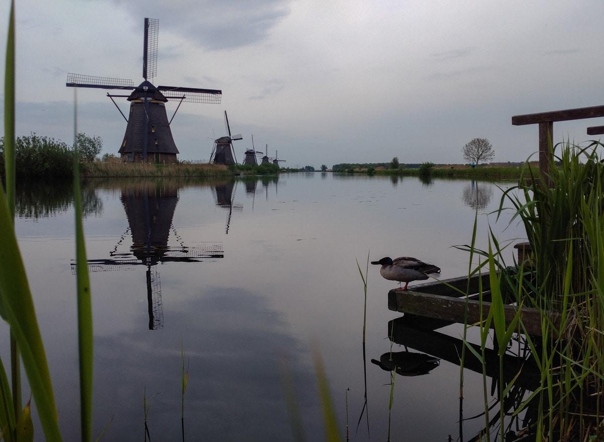Голландия: Киндердейк и Роттердам