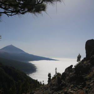 Впечатления от экскурсии по Тенерифе 2020